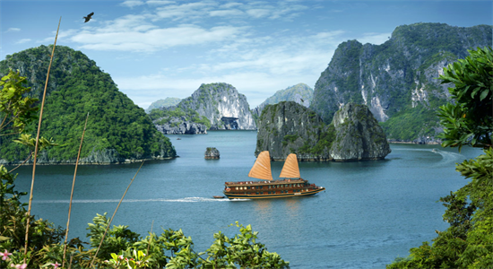 Ha Long Bay One Day Tour